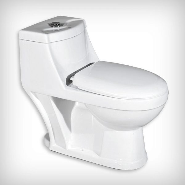 Washdown One Piece Toilet